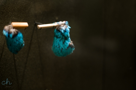 blue feather jewellery