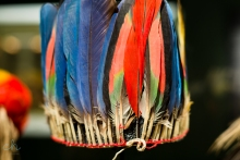 colourful feather crown