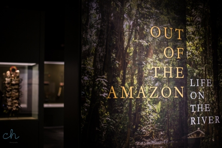 out of the amazon entrance to museum exhibit