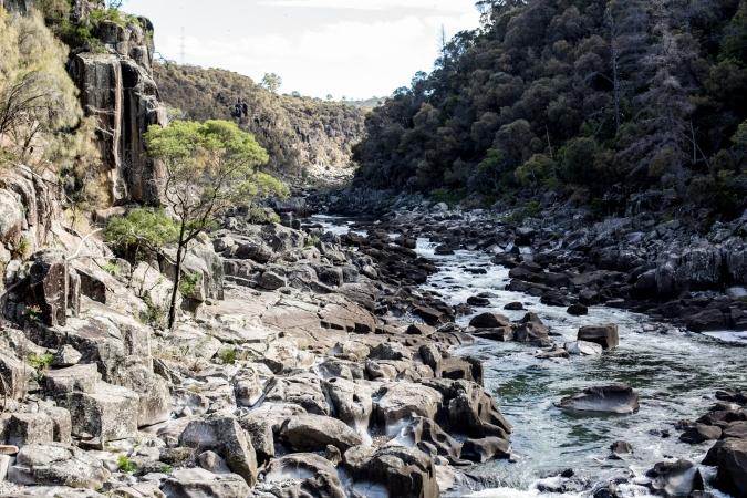 tasmania-139