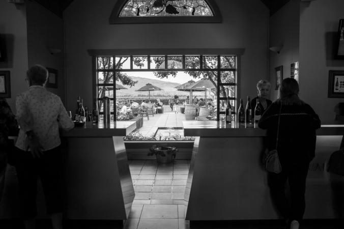 winery in waipara valley NZ