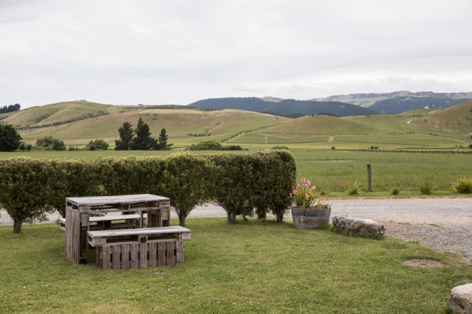 new zealand winery scene