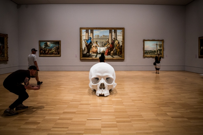 giant scull in art museum