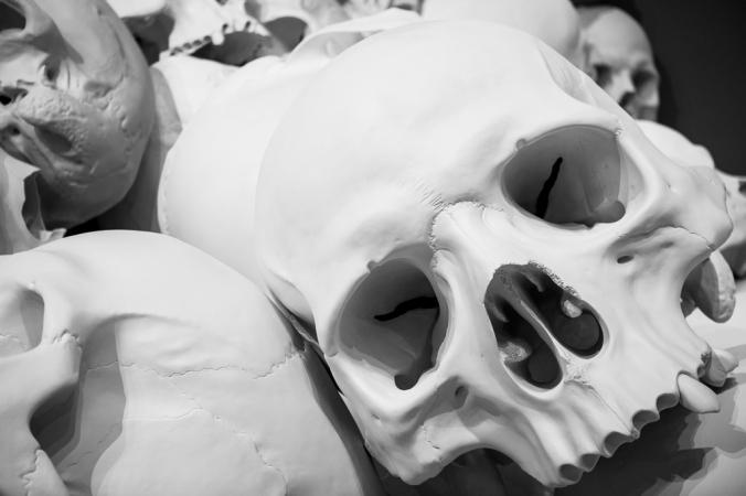 big human skull on pile