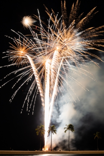 gold fireworks and palm trees in hawaii