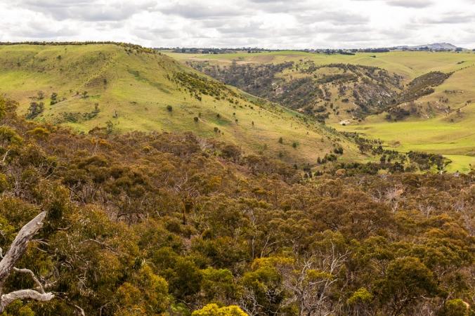 gorge hike-1