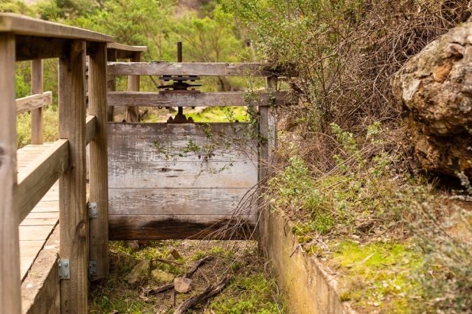 gorge hike-16