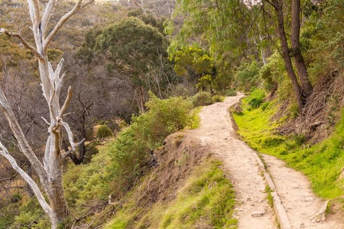 gorge hike-18