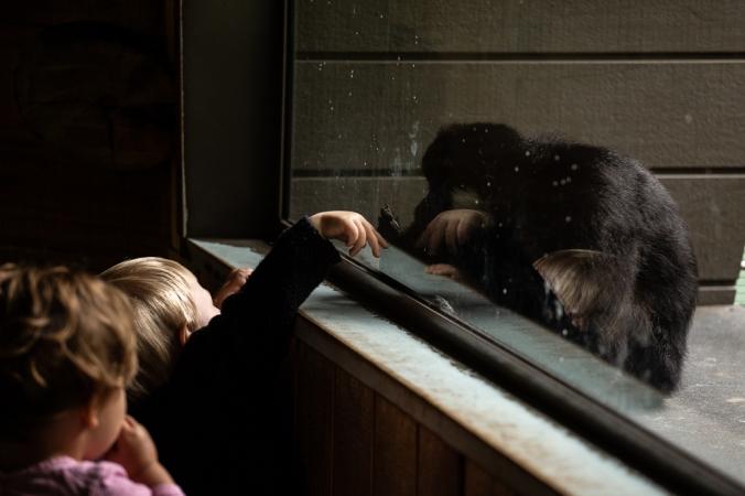 melb zoo-8