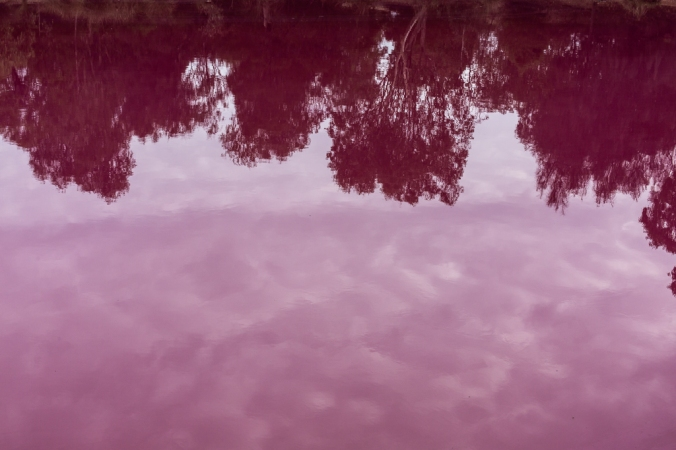 reflections in pink lake in melbourne